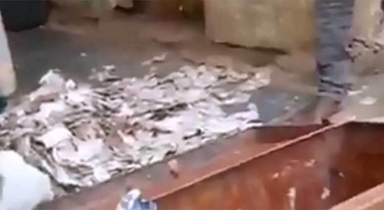 Acabaron las termitas con los ahorros de toda su vida