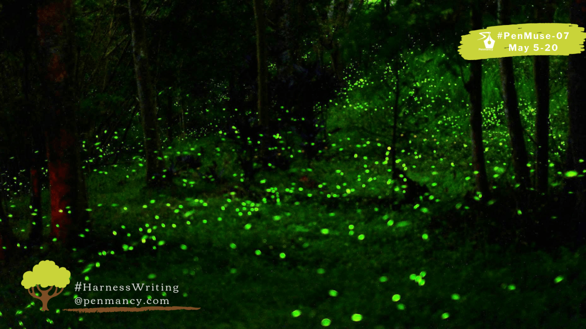 Romance of the Fireflies