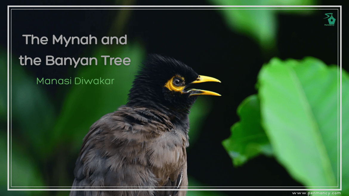 The Mynah and the Banyan Tree