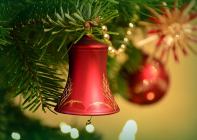 Du Sapin au Jardin – Marché de Noël