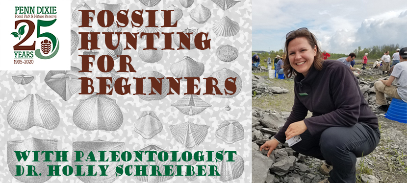 Fossil Hunting For Beginners