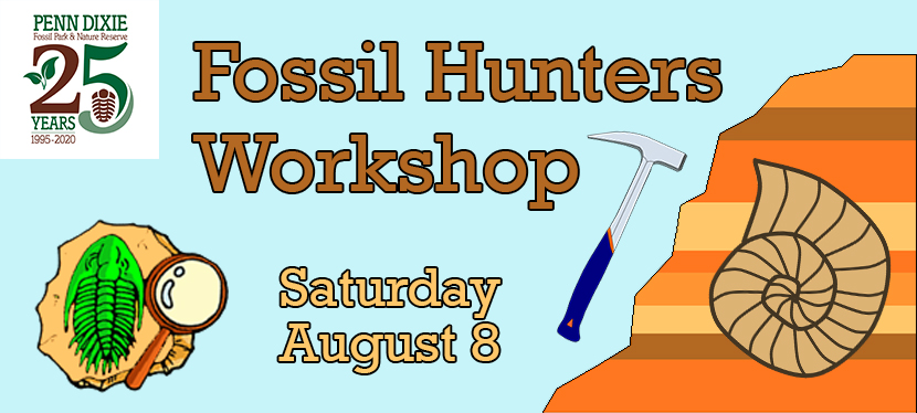 Fossil Hunters Workshop