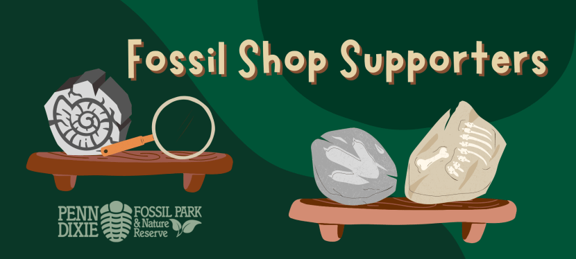 Fossil Shop Supporters