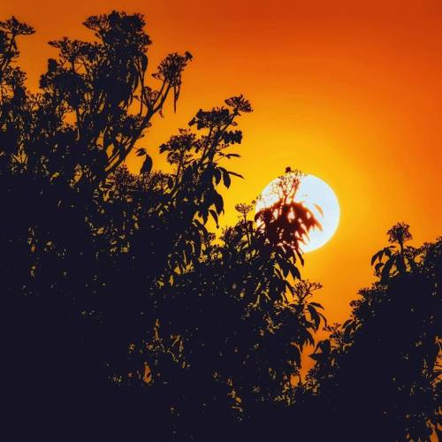 Sunset at from here flat in Bangalore captured by Ajita Mahajan aka Penning Silly Thoughts