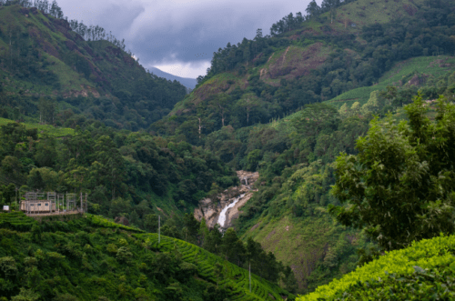 Attukad Waterfall surrounded by greens on all sides