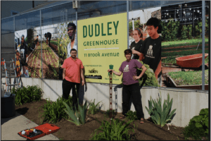 Dudley Greenhouse (Photo Credit: DSNI)