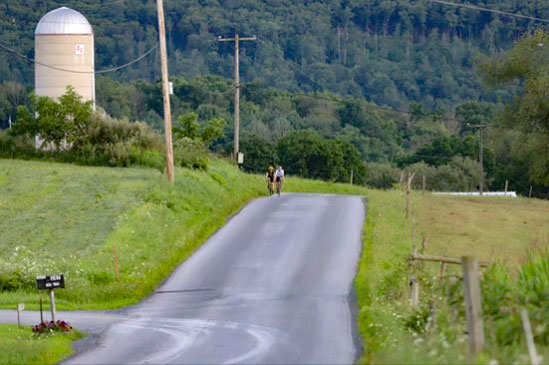 Bicycle riders on Long Lane