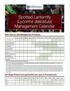Spotted Lanterfly (Lycorma delicatula) Management Calendar
