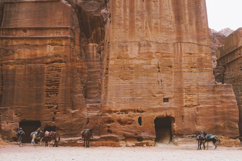 As you keep moving past the treasury, you pass canyon walls that are fully carved.