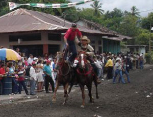 Boquete is located in the Chiriqui Province in Panama, which is known as the Texas of Panama.   Rodeos and calf roping are common