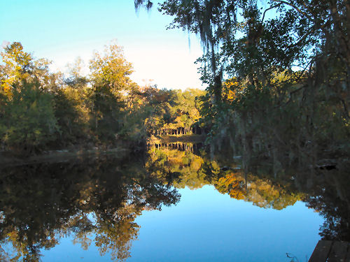 Crystal clear reflection in the waters of the Santa Fe River