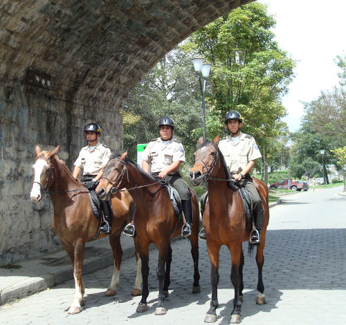 horse-police
