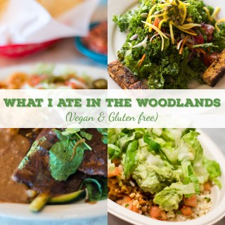 What I Ate in The Woodlands (Vegan & gluten free)
