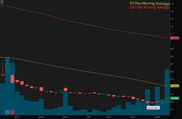 top penny stocks to watch Sundial Growers Inc. (SNDL stock chart)