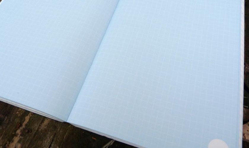 Hard Work notebook more sensible ruling