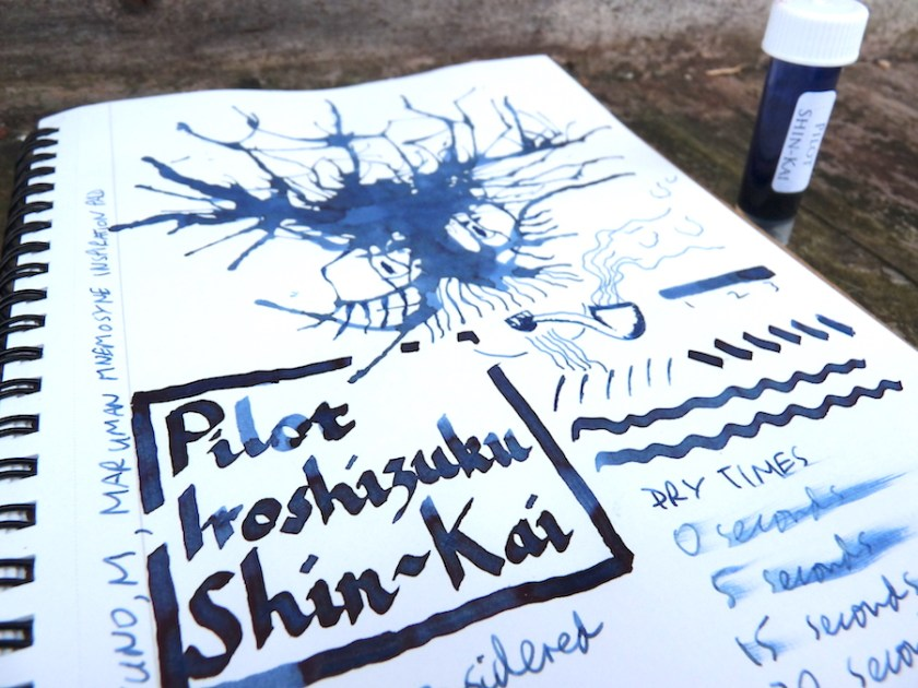 Pilot Iroshizuku Shin-Kai ink review