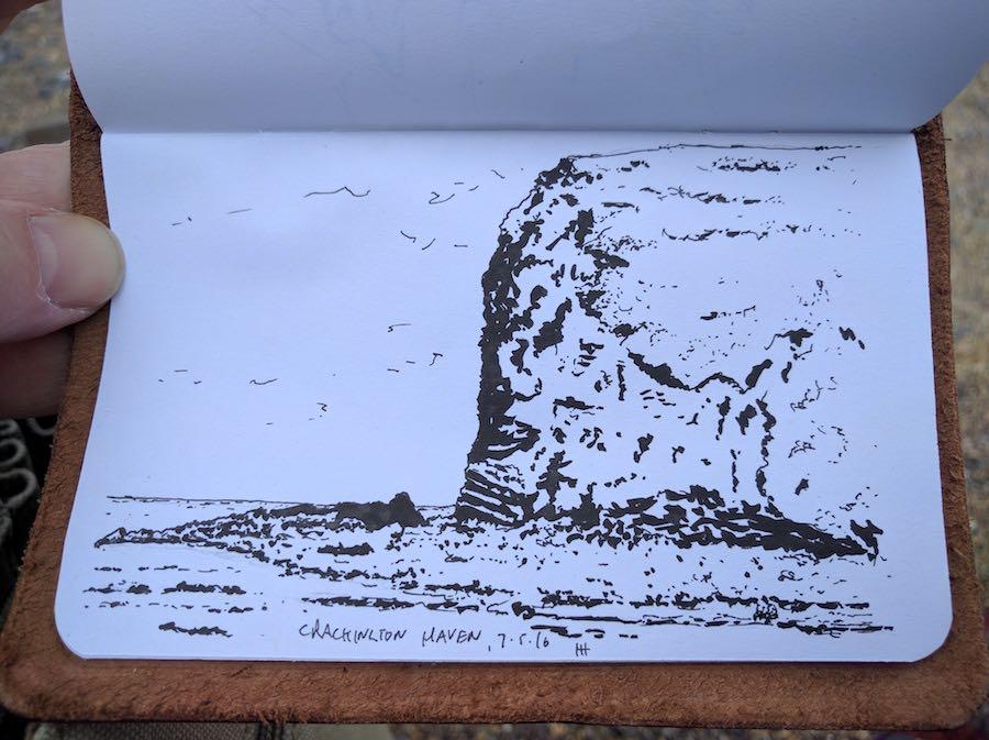 Crackington Haven cliff closeup