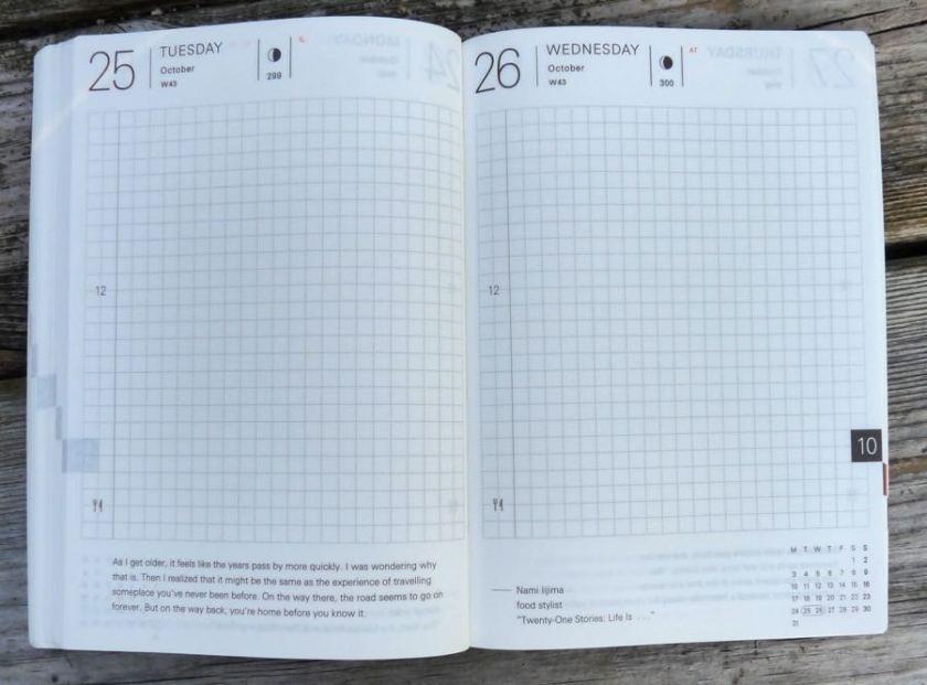 Hobonichi Techo day per page