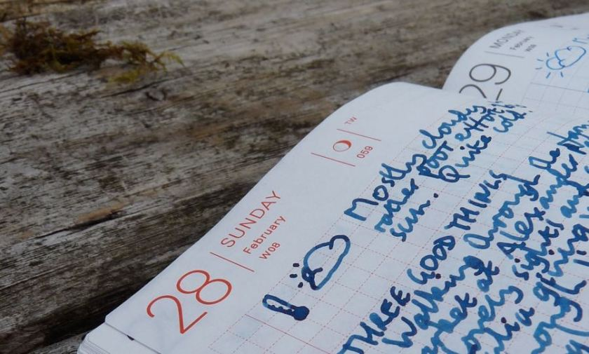 Hobonichi Techo three good things
