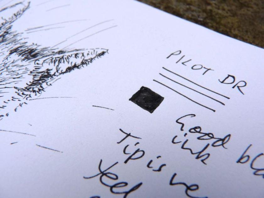 pilot-dr-drawing-pen-closeup-ink