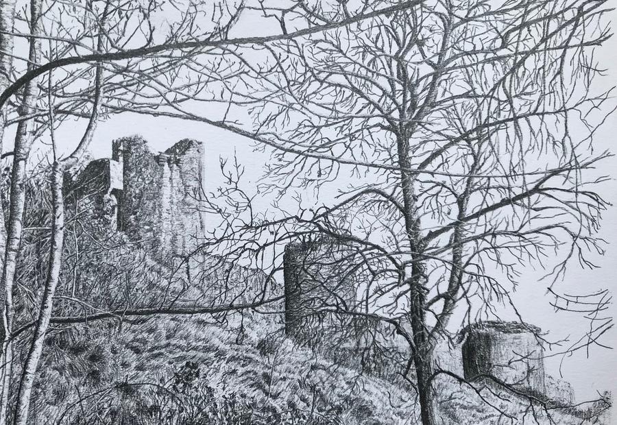 Corfe Castle through the trees