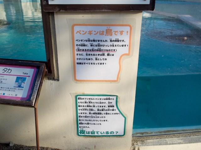 京都市動物園 ペンギン舎