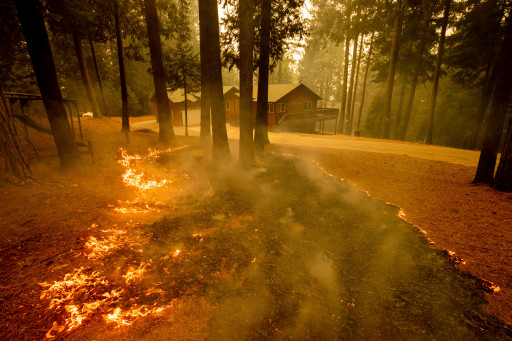 Flames from the Caldor Fire scorch the ground in Grizzly Flats, California.