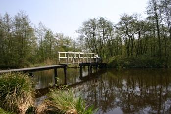 Natuurreservaat Rottige Meenthe
