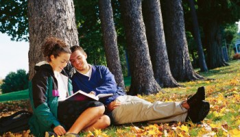 Couple Reading Book by Tree