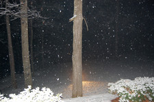 Snow_view_from_front_porch