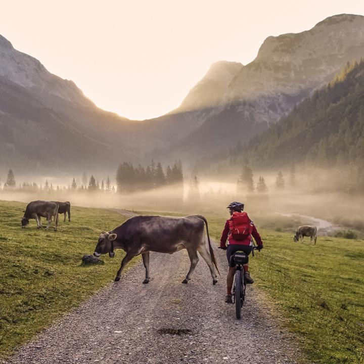 E-Mountainbike Ausflug