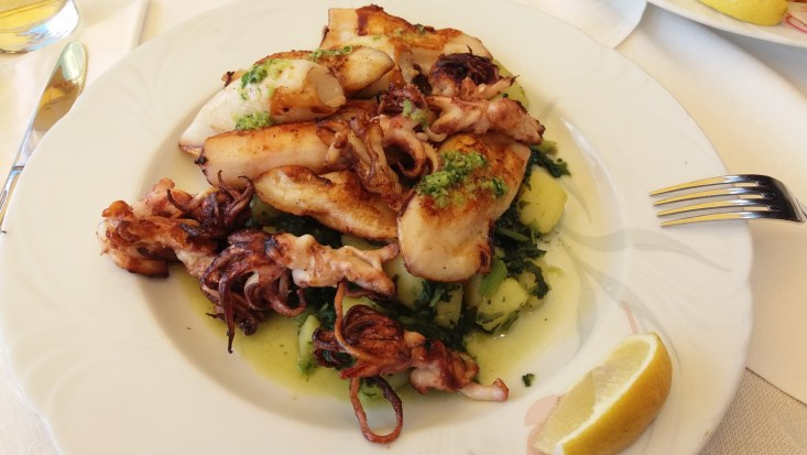Grilled marinated calamari istria
