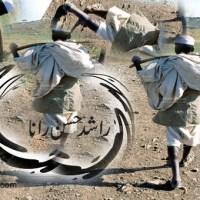 دائرہ ۔۔۔ راشد حسن رانا