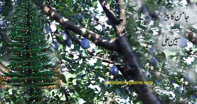 جامن کا پیڑ ۔۔۔ سبین علی
