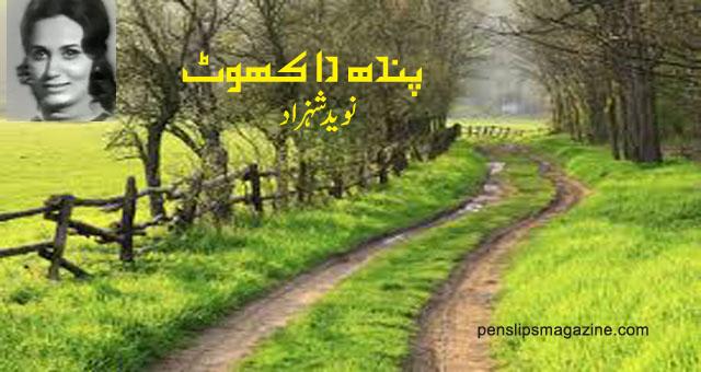 pendh-da-khot-navid-shahzad