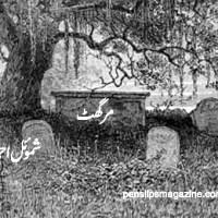 مرگھٹ ۔۔۔ شموئل احمد
