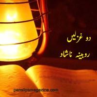 دو غزلیں ۔۔۔ روبینہ ناشاد