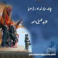 چاند، چرخہ اور بڑھیا ۔۔۔ شاہد جمیل احمد