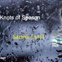 The Knots of Season .... Sarosh Latif