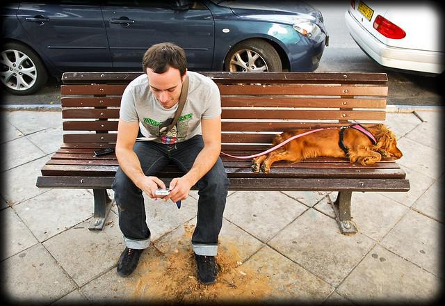 איש וכלב