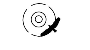 HawkScan - Security Tool For Reconnaissance And Information Gathering On A Website. (Python 2.X &Amp; 3.X)
