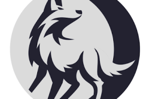 SourceWolf - Amazingly Fast Response Crawler To Find Juicy Stuff In The Source Code!