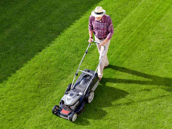 Find the best lawnmower at Penticton Home Hardware.