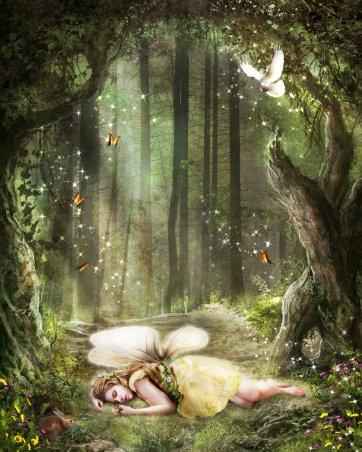 wood_fairy_2_by_ktryon-d4ktnst
