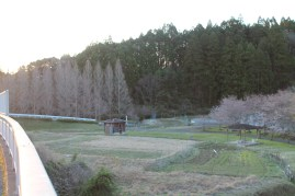 上総亀山 surroundings 11