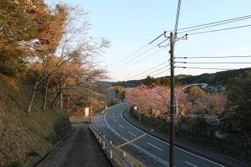 上総亀山 graveyard path 2