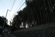 上総亀山 surroundings 16