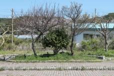 富浦 Park 1.1