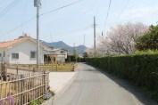 岩井 Streets 6